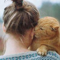 Котенок лижет ухо